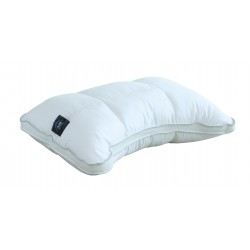 Air Active Deluxe Shoulder Pillow